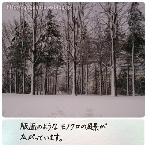 【English】白黒いろいろ_e0132084_22282978.jpg