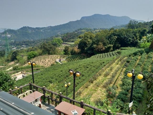台湾旅行 (3) 猫空ロープウェイで登って樟樹歩道で茶畑を散歩する_f0100593_16471094.jpg