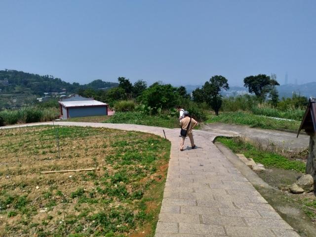 台湾旅行 (3) 猫空ロープウェイで登って樟樹歩道で茶畑を散歩する_f0100593_16482188.jpg