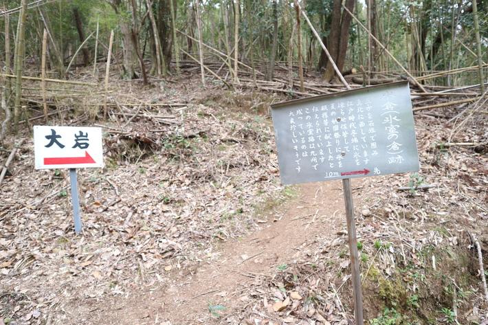 大岩の山桜&イワツツジ!_e0272335_17575715.jpg