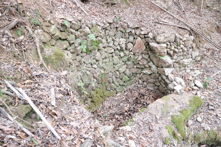 大岩の山桜&イワツツジ!_e0272335_17595194.jpg