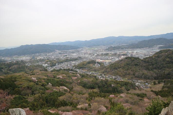 大岩の山桜&イワツツジ!_e0272335_190959.jpg