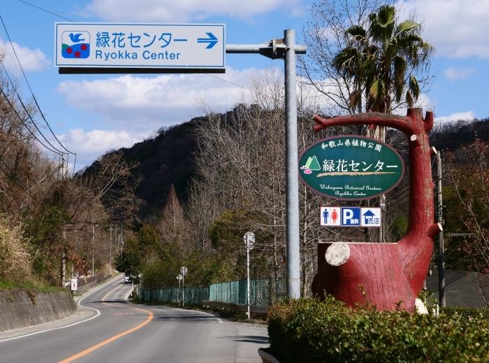 和歌山県植物公園緑花センター  2019-03-26 00:00   _b0093754_17455086.jpg