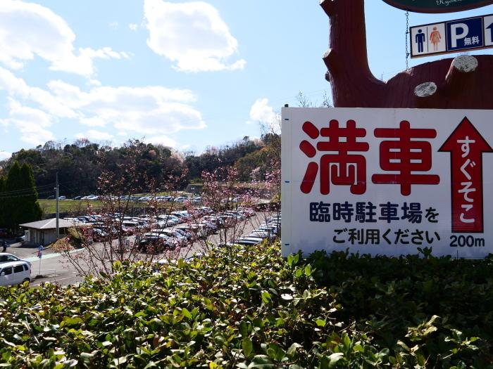 和歌山県植物公園緑花センター  2019-03-26 00:00   _b0093754_17461985.jpg