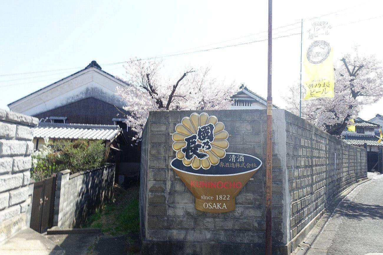 高槻市 筒井池公園の桜_c0112559_08131051.jpg