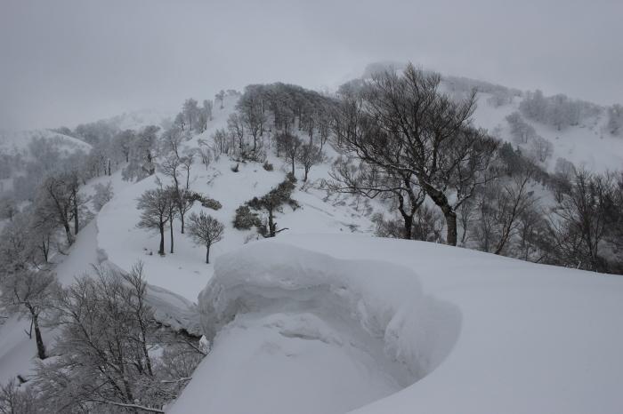 3月24日   金剛堂山_f0223068_13492654.jpg