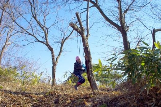 庭の栗の木で即席ブランコ、木登り_c0110869_08542939.jpg