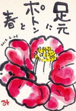 春です♪_b0140270_8383716.jpg