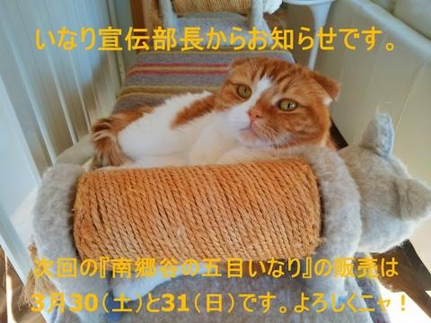 d0257697_1628206.jpg