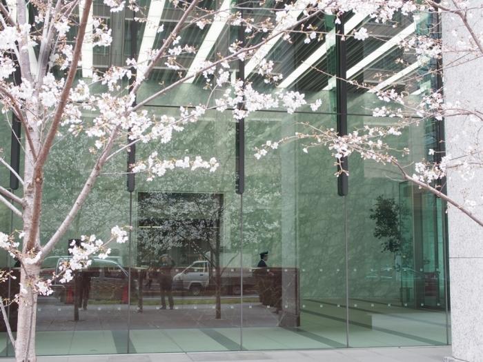 写真展、ついでに都心の桜_f0224100_22025096.jpg