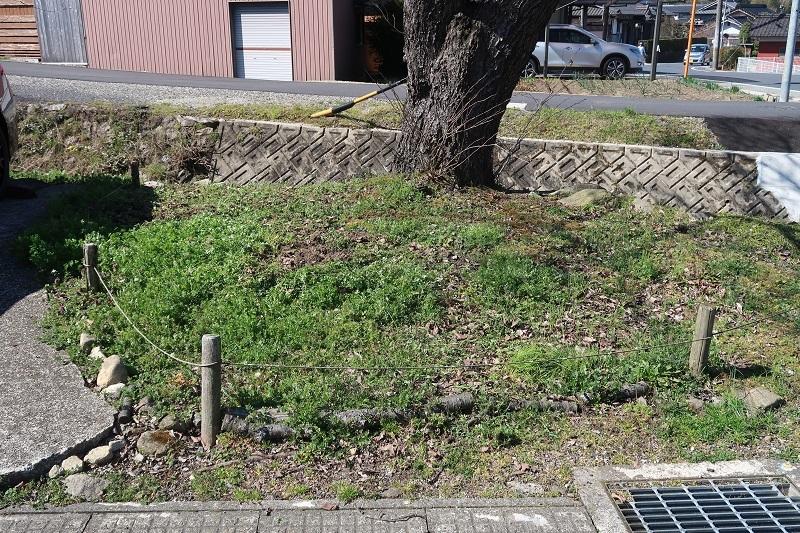 春の和菓子_f0076731_19170567.jpg