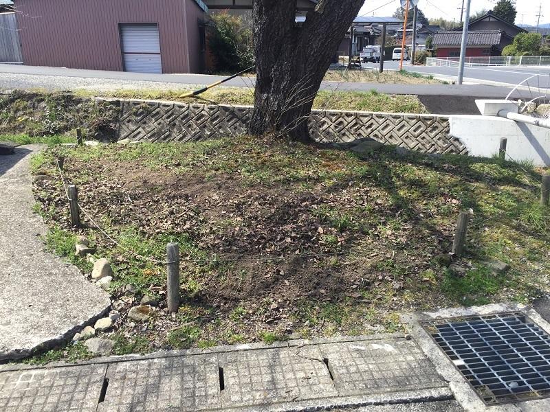 春の和菓子_f0076731_19171218.jpg