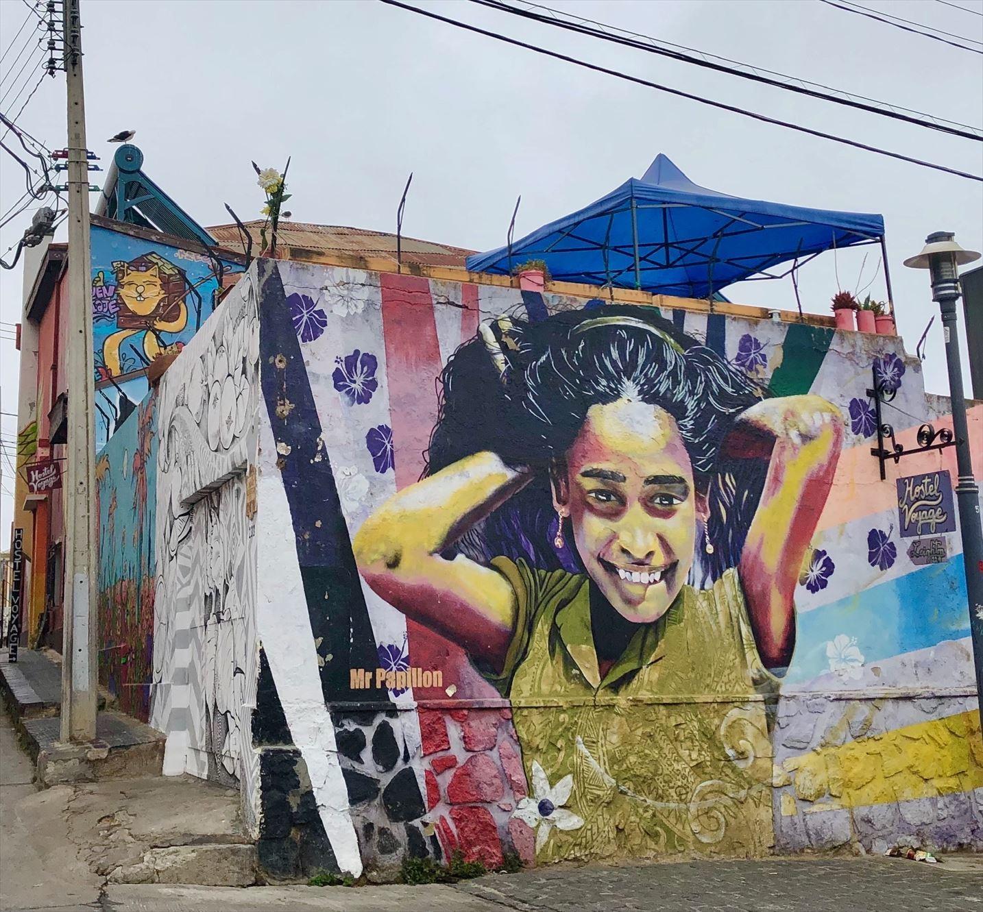 中南米21日間の旅 / 1 アートな街 バルパライソ@チリ_a0092659_18525061.jpg