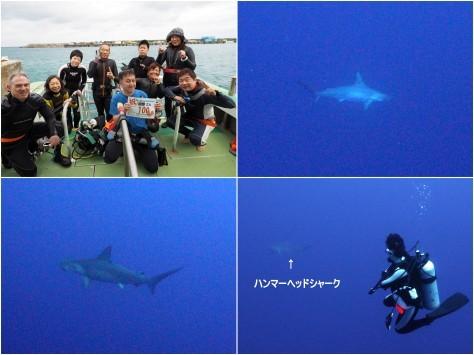 3月26日 海底遺跡日和。_d0113459_20323121.jpg