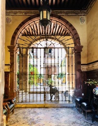 San Miguel de Allende(サンミゲル デ アジェンデ)_d0233672_18032936.jpeg