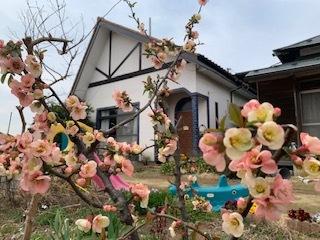 生涯学習センター&お庭の花_e0040673_12570188.jpg