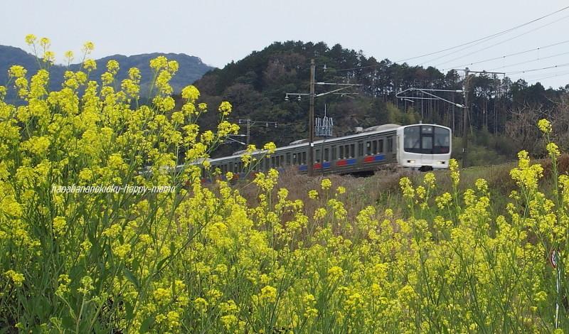 """JR鹿児島本線をゆく""""_c0357781_19340776.jpg"""