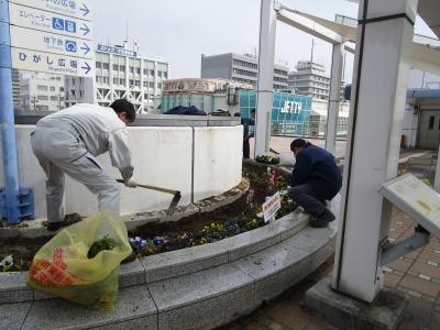 名古屋港水族館前花壇の植栽H31.3.6_d0338682_12481230.jpg