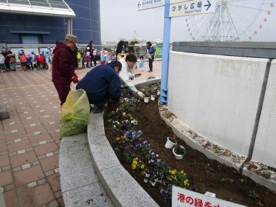 名古屋港水族館前花壇の植栽H31.3.6_d0338682_12482253.jpg
