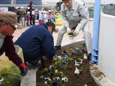 名古屋港水族館前花壇の植栽H31.3.6_d0338682_12483399.jpg