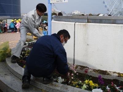 名古屋港水族館前花壇の植栽H31.3.6_d0338682_12494534.jpg