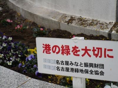 名古屋港水族館前花壇の植栽H31.3.6_d0338682_12505490.jpg