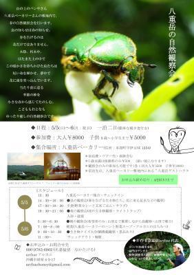 八重岳の自然観察会 2019 春 開催します!_a0247891_22430101.jpg