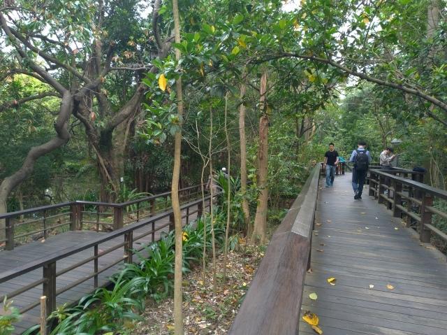 台湾旅行 (5) 台北植物園でのんびり&国立台湾博物館へ_f0100593_20145068.jpg