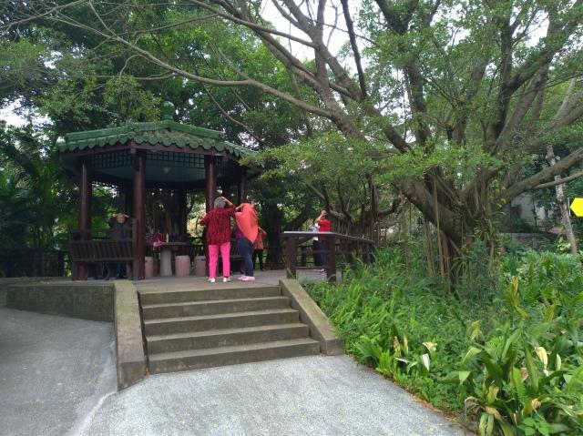 台湾旅行 (5) 台北植物園でのんびり&国立台湾博物館へ_f0100593_20162806.jpg