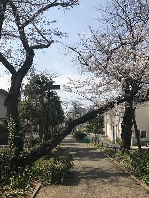 春風_a0155408_14225492.jpg