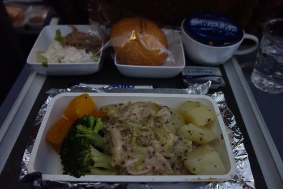 シンガポール2019 機内食と買ってきたもの_e0230011_17103673.jpg