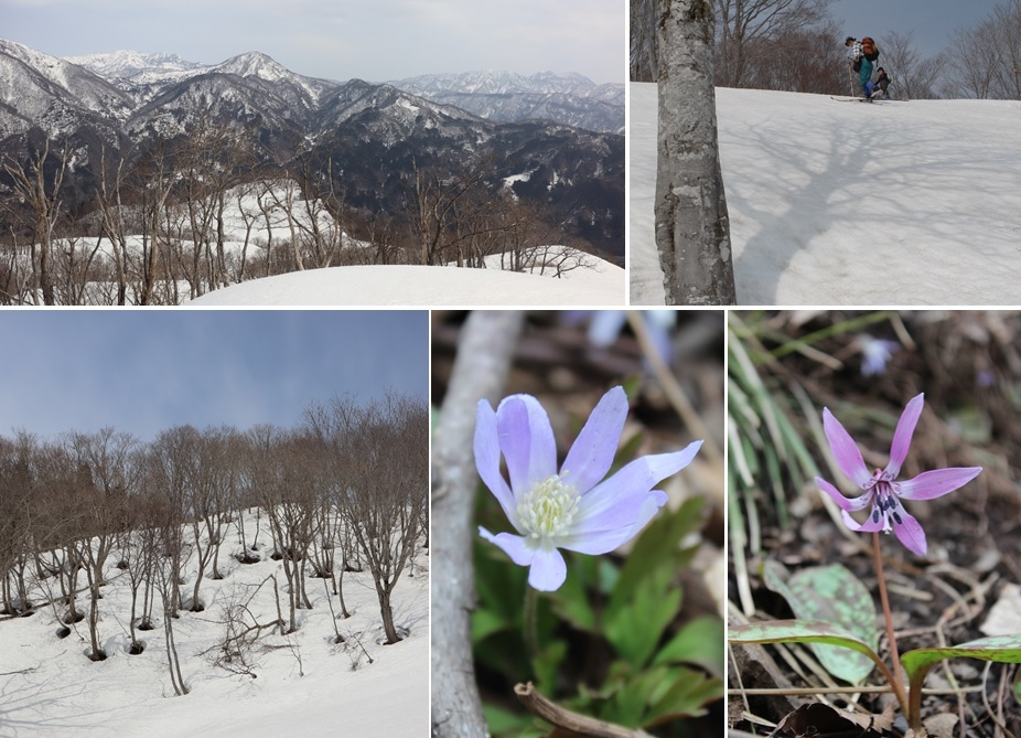 紙すき山牧場のスキー_a0212730_19092459.jpg