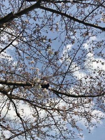 3月25日(月)26日(火)放送後記_f0201039_00453174.jpg