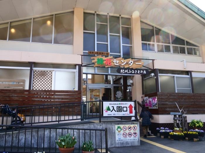 和歌山県植物公園緑花センター(終)  2019-03-28 00:00   _b0093754_22165141.jpg