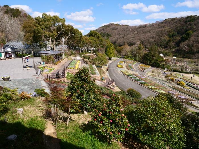 和歌山県植物公園緑花センター(終)  2019-03-28 00:00   _b0093754_22171887.jpg