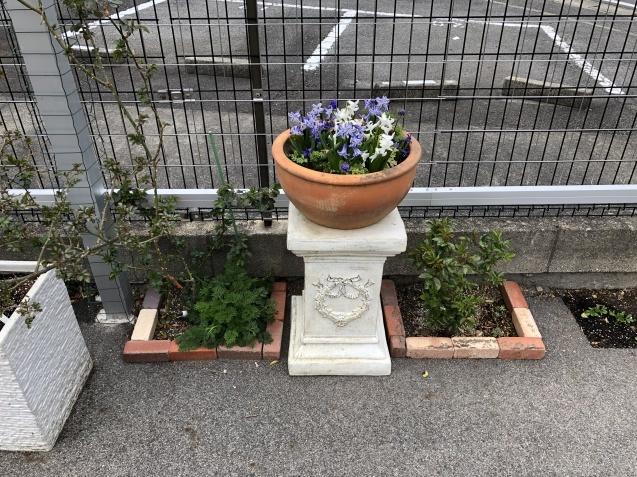 大きい女像を購入したので、ローマスタンドを通路アーチ前に移動。クレマチス「プリンス・チャールズ」も植え込み。_a0243064_12142129.jpg