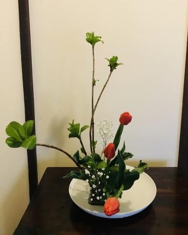 今週のお花_a0080074_15265369.jpeg