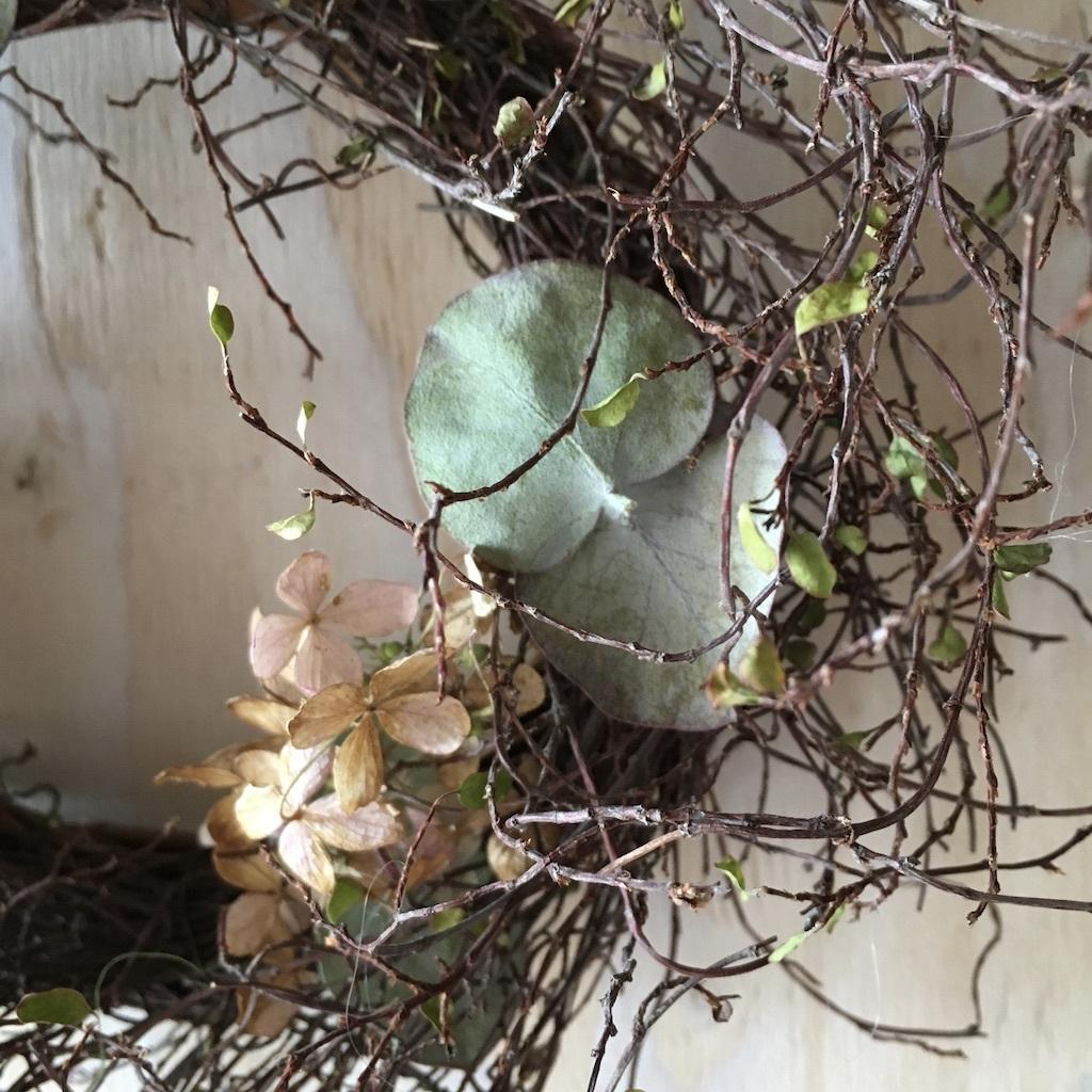 母屋の裏庭&ワイヤープランツのリース_c0334574_09561882.jpg