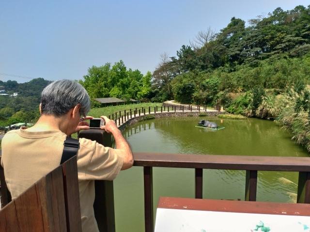 台湾旅行 (3) 猫空ロープウェイで登って樟樹歩道で茶畑を散歩する_f0100593_14395449.jpg
