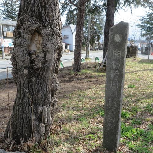 第一回卒業生記念樹&開校拾周年記念植樹_c0075701_10251261.jpg