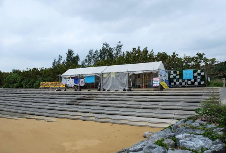 ■辺野古海岸で宝貝を探す――沖縄米軍基地ツアー_d0190217_22154462.jpg