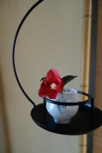 桜の箸置き&椿も咲いてまーす_a0197730_12501741.jpg