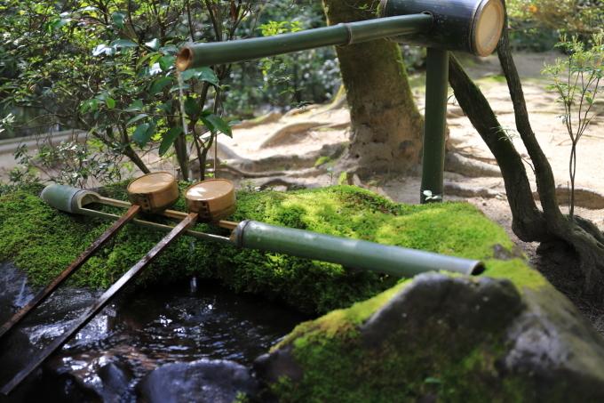 【唐招提寺】奈良旅行 - 2 -_f0348831_20050312.jpg