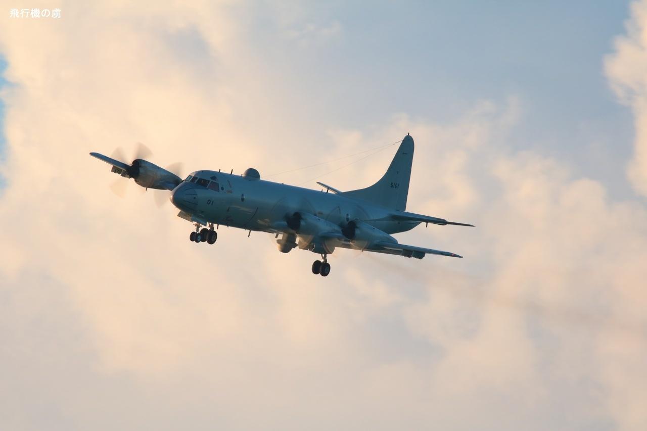 怪しいブツ  P-3C  海上自衛隊_b0313338_01202178.jpg