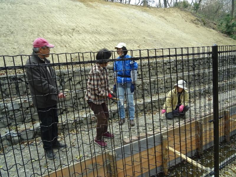 復旧した小川周辺の整備・・・うみべの森_c0108460_16264694.jpg