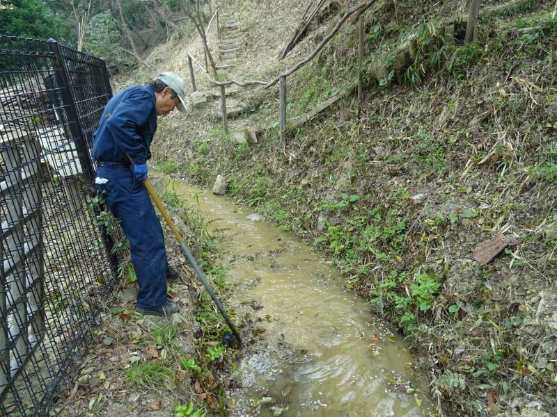 復旧した小川周辺の整備・・・うみべの森_c0108460_16291270.jpg