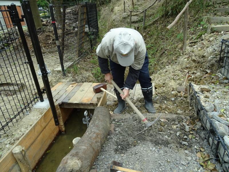 復旧した小川周辺の整備・・・うみべの森_c0108460_16300426.jpg