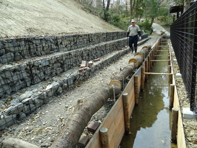 復旧した小川周辺の整備・・・うみべの森_c0108460_16335211.jpg