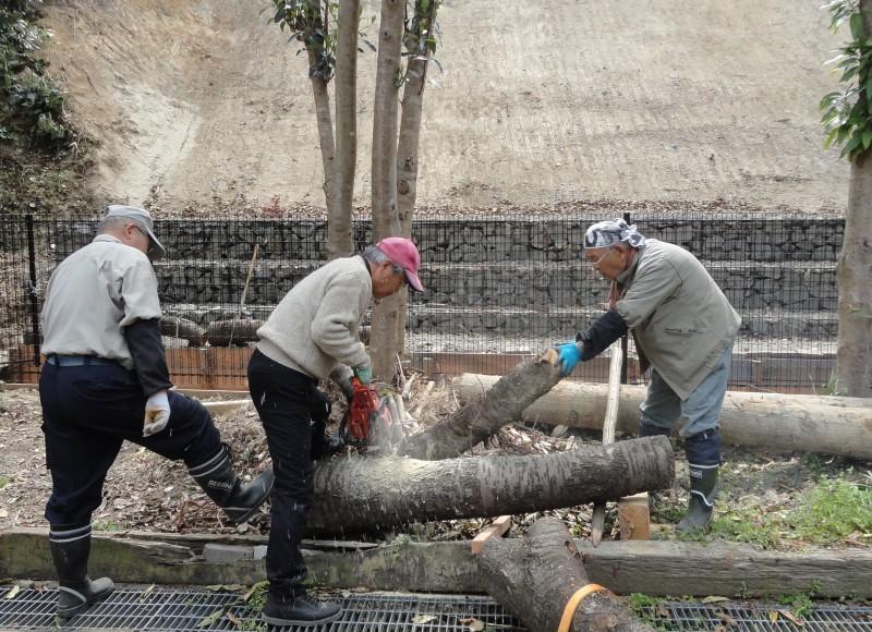 復旧した小川周辺の整備・・・うみべの森_c0108460_17350421.jpg