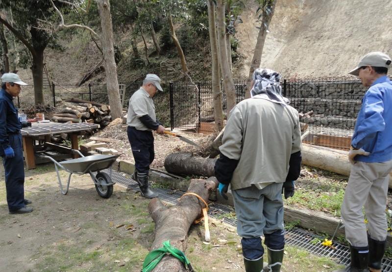 復旧した小川周辺の整備・・・うみべの森_c0108460_17350422.jpg